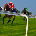 Premier Disco How to host a race night